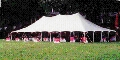 Where to rent 40 x 120 POLE TENT, WHITE-EU in Cary NC
